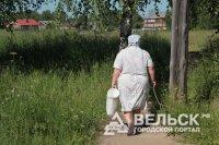 Население Вельского района сократилось на 7 тысяч жителей