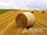 Дотации для бизнеса за вовлечение земель в сельхозоборот