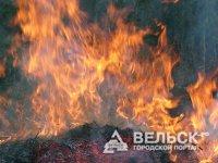 Пожары в Шенкурском районе