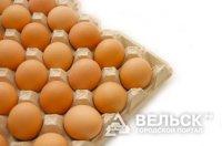 В Вельске расширяется производство яиц