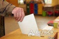 Вельские выборы - 2012