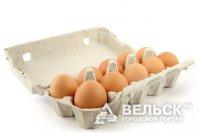 В Вельск поставляли контрофактные яйца