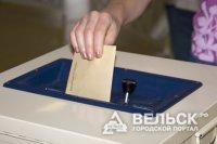 В Вельске выбирали депутатов муниципального совета