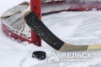 Вельчане поедут на турнир по хоккею