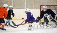 В Вельске создадут федерацию хоккея