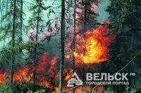 В Шенкурске ликвидировали пожар
