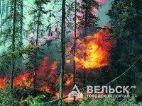 Пожар локализован