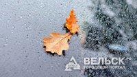 В Поморье пришла осень