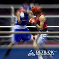 Четверо боксеров Архангельской области вошли в состав сборной СЗФО