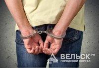 В Шенкурском районе полиция задержала злоумышленника, подозреваемого в краже