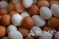 Промышленное птицеводство Архангельской области оказалось в сложной ситуации